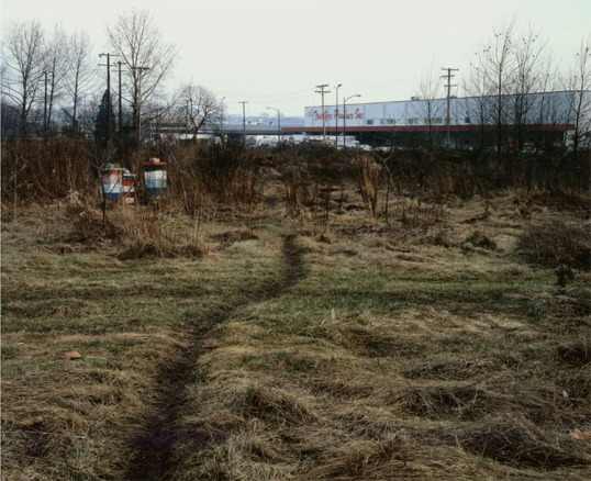Jeff Wall -- The Crooked Path