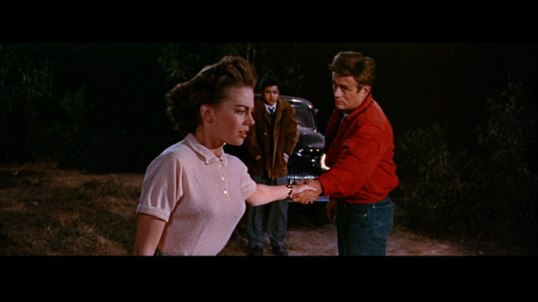 Rebel Without A Cause 2