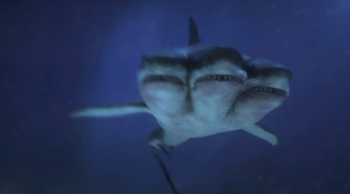 Lets Talk About 3 Headed Shark