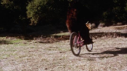 Goldy Rides