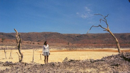 Walkabout (1971, directed by Nicolas Roeg)