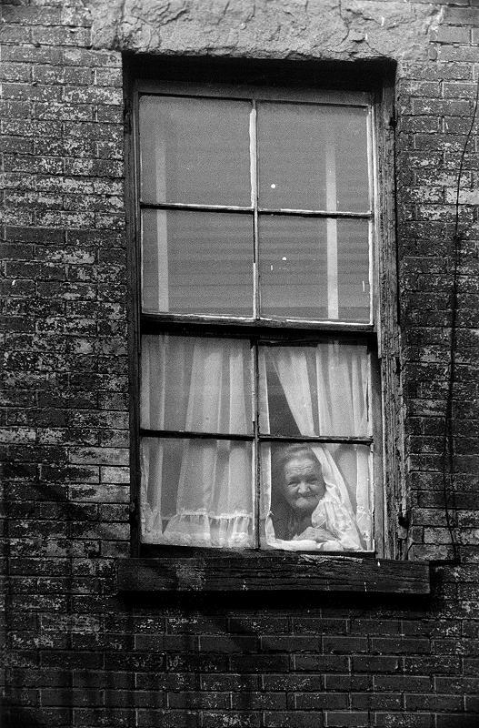 Photograph -- Window Lady