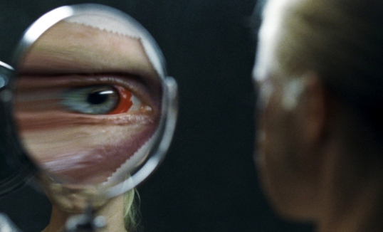 Goodnight Mommy (dir. by Veronika Franz and Severin Fiala)
