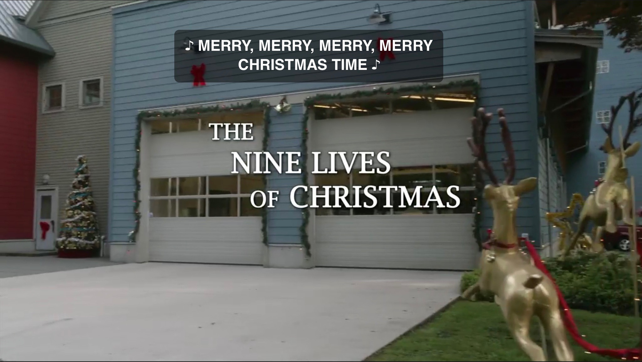 Hallmark Review: The Nine Lives Of Christmas (2014, dir. Mark Jean ...
