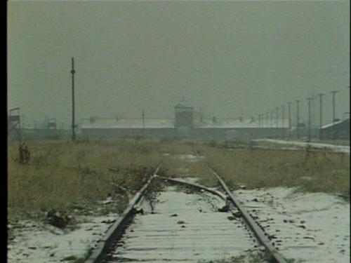 Shoah (1985, dir. Claude Lanzmann)