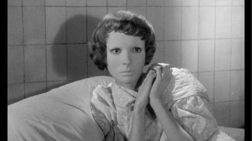 Eyes Without A Face (1960, dir. Georges Franju)