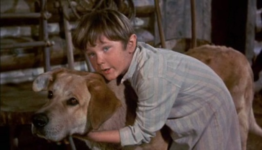 Kevin Corcoran (Old Yeller)