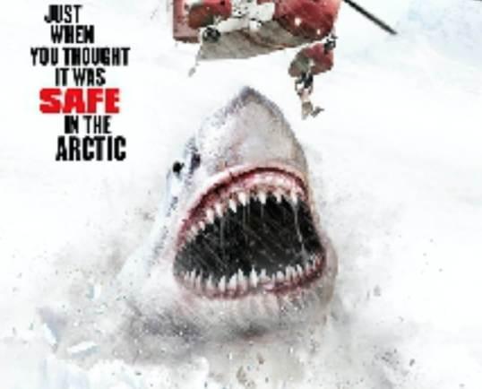ice-sharks.2-1-1