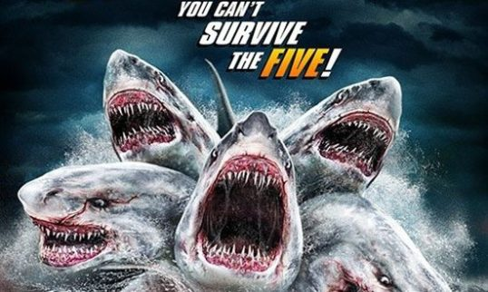 In Short This Is A Movie That Delivers Exactly What It Promises The Movie Says Its Going To Give You A 5 Headed Shark And Thats What You Get