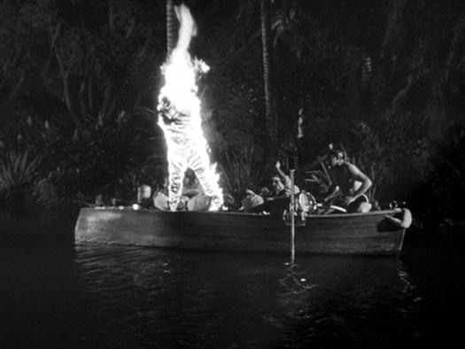 Halloween Havoc!: THE CREATURE WALKS AMONG US (Universal-International  1956) | Through the Shattered Lens